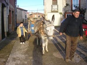 Operación kilo 2008