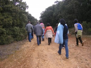Ruta por el monte enero 2009 a