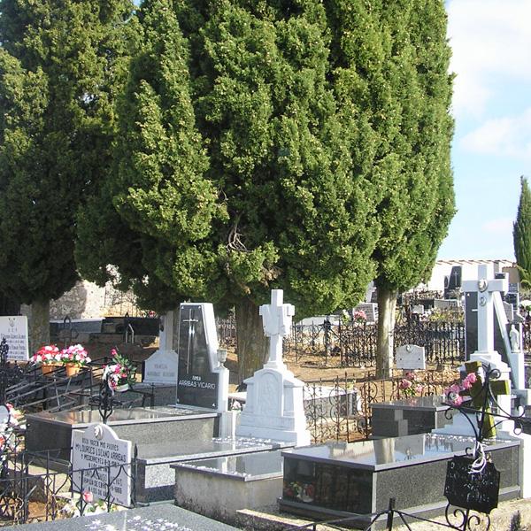 Cementerio Mecerreyes (1)