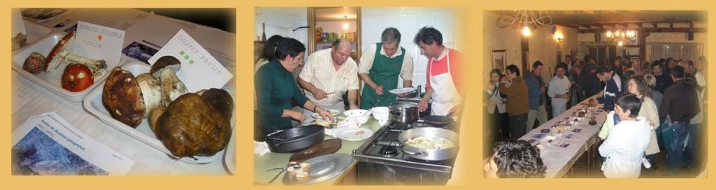 3ª Jornadas Micológicas 2009 - Mecerreyes