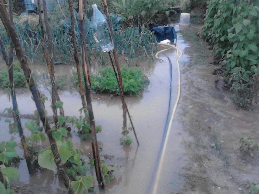 Mecerreyes, huertas 2013 inundaciones (2)