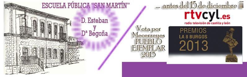 Mecerreyes 2013
