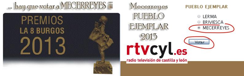 Mecerreyes, Pueblo Ejemplar 2013