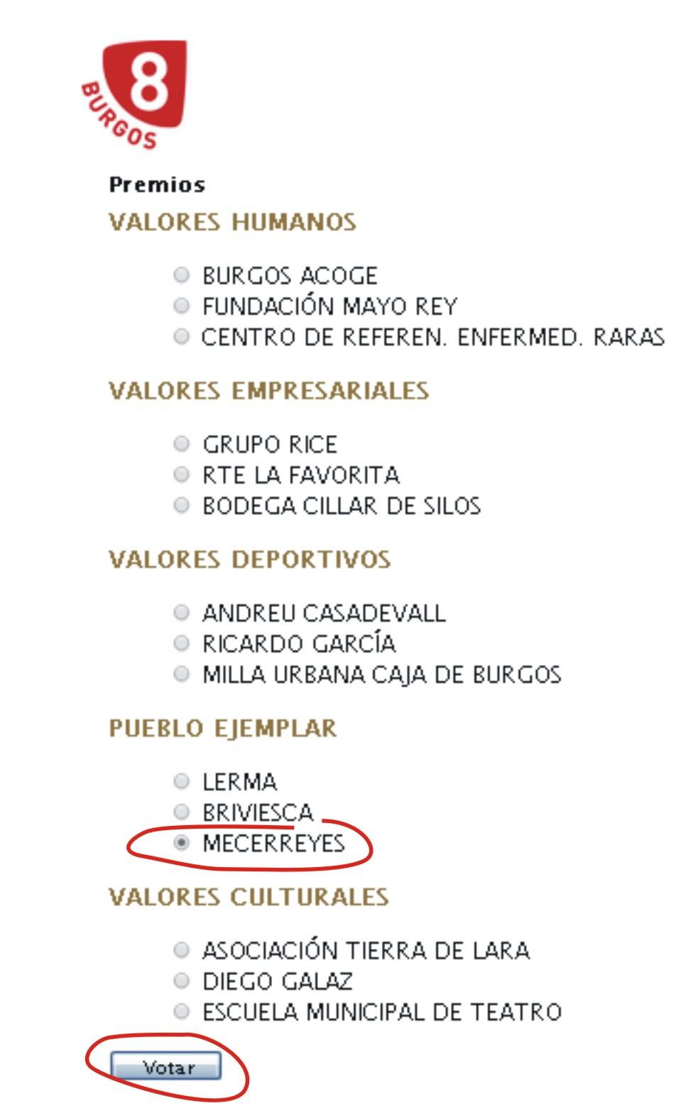 Pueblo ejemplar 2013: Mecerreyes