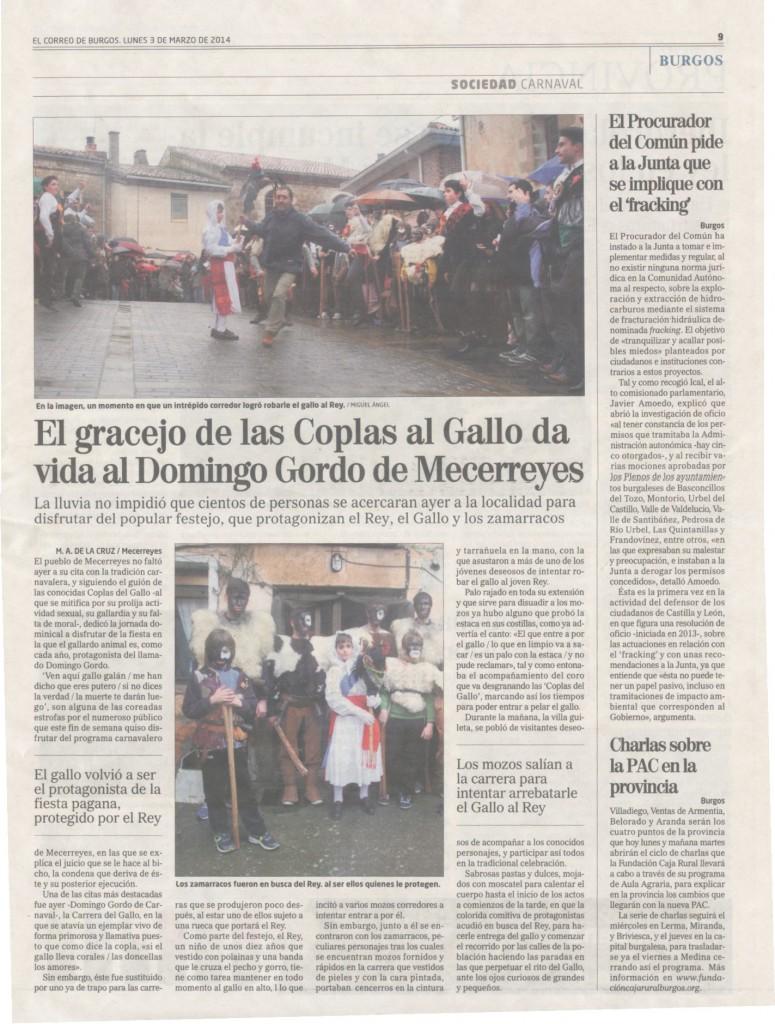 Mecerreyes, El Correo de Burgos 3-03-2014 Domingo de Carnaval