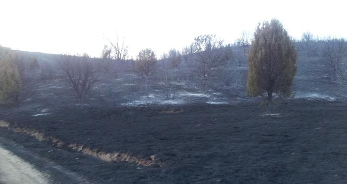 Incendio 1-09-2014 Mecerreyes, Puentedura, Quintanilla del Agua