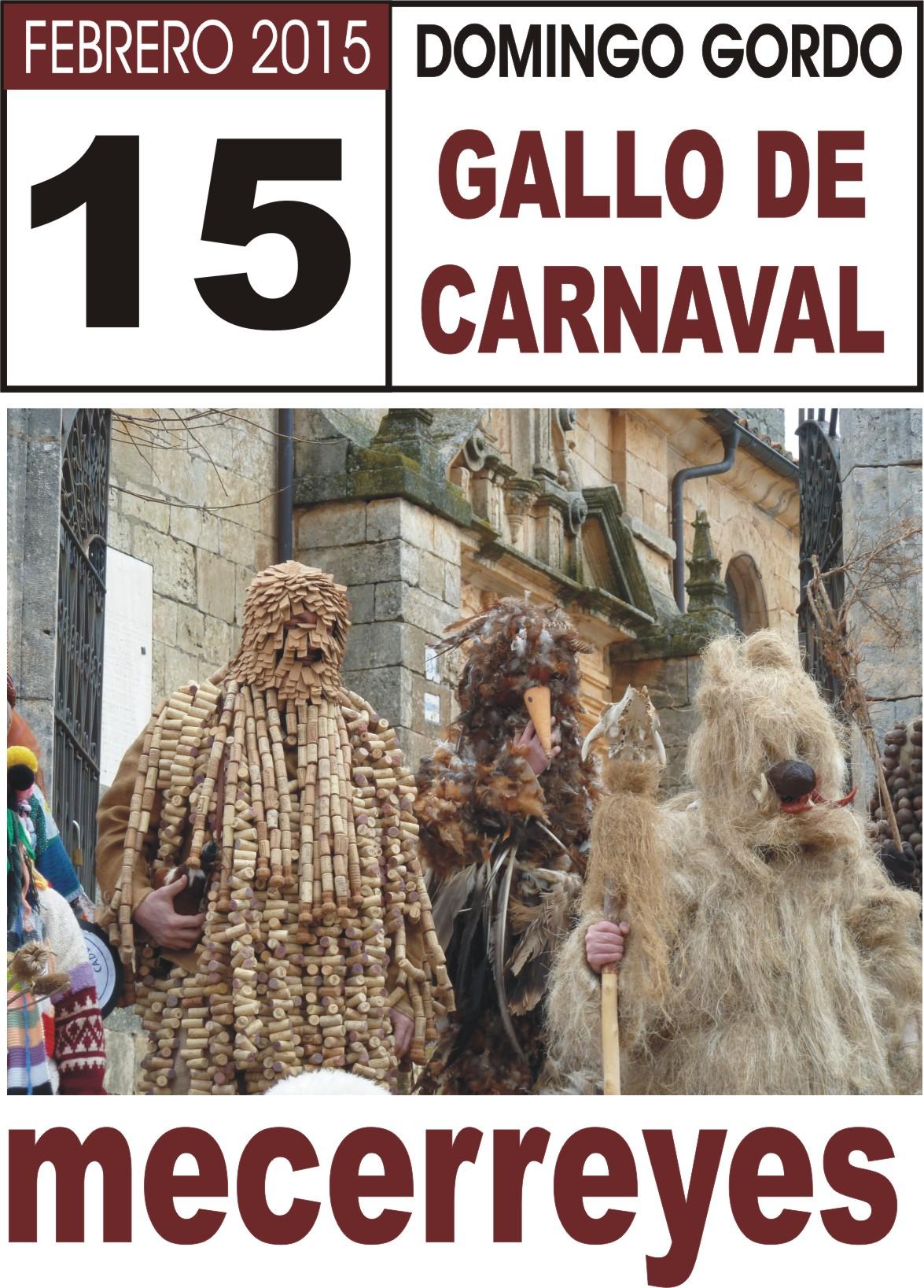Mecerreyes, Fiesta Gallo 2015