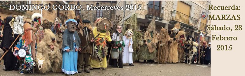 Mecerreyes, Zarramacadas y Carnavaladas 2015