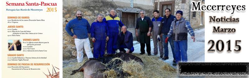 Mecerreyes, noticias Marzo 2015