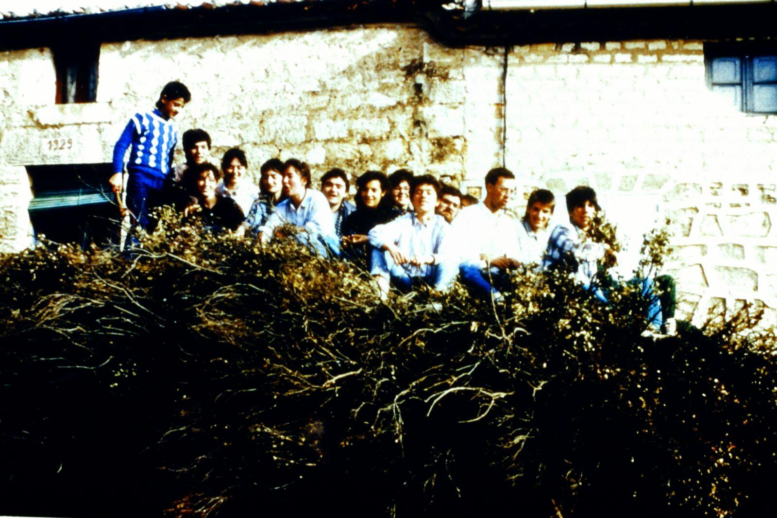 Mecerreyes, recogida de támbaras, año 1986. Foto Fernando Alonso, 1