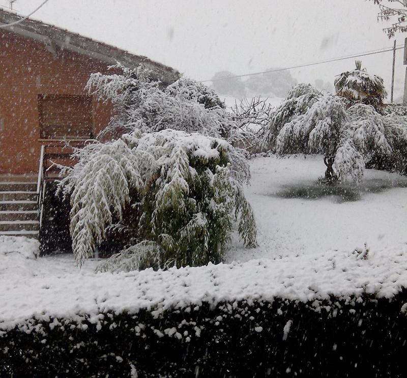 Mecerreyes, nevada 31-03-2016