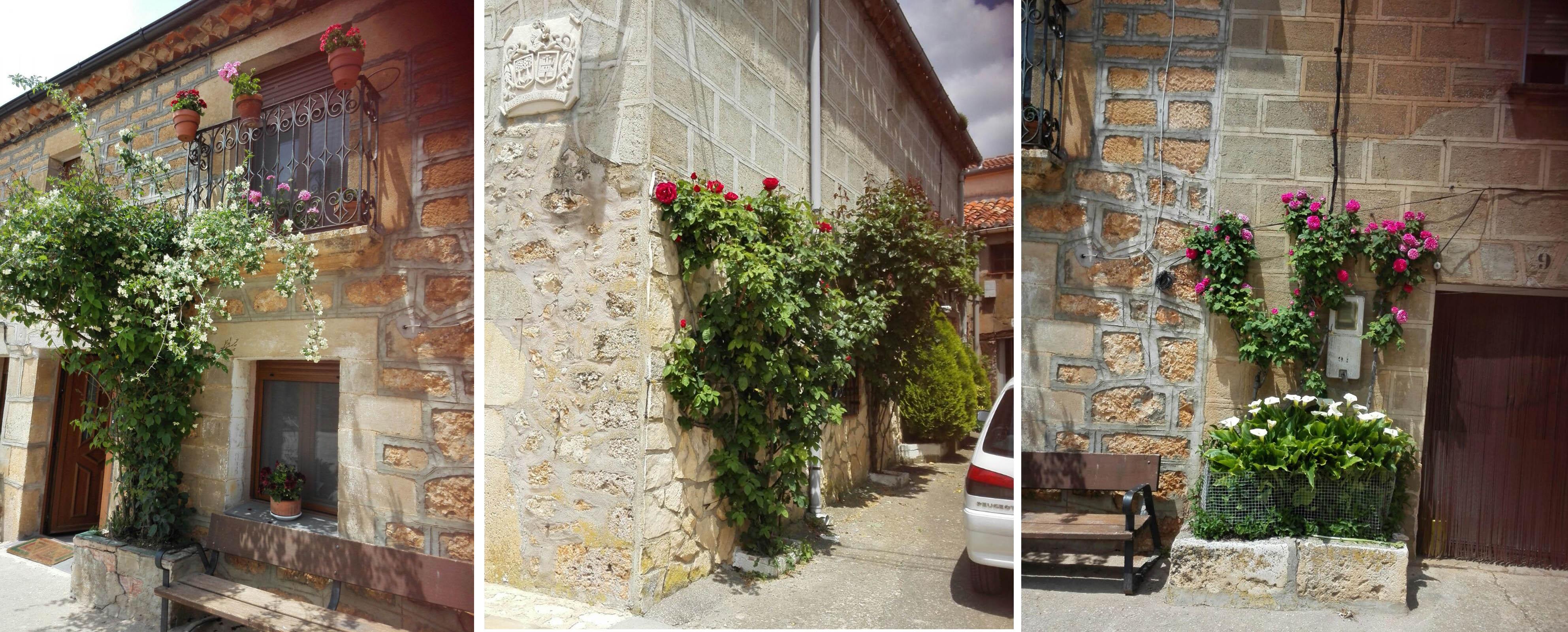 Fachadas floreadas, Mecerreyes mayo 2016