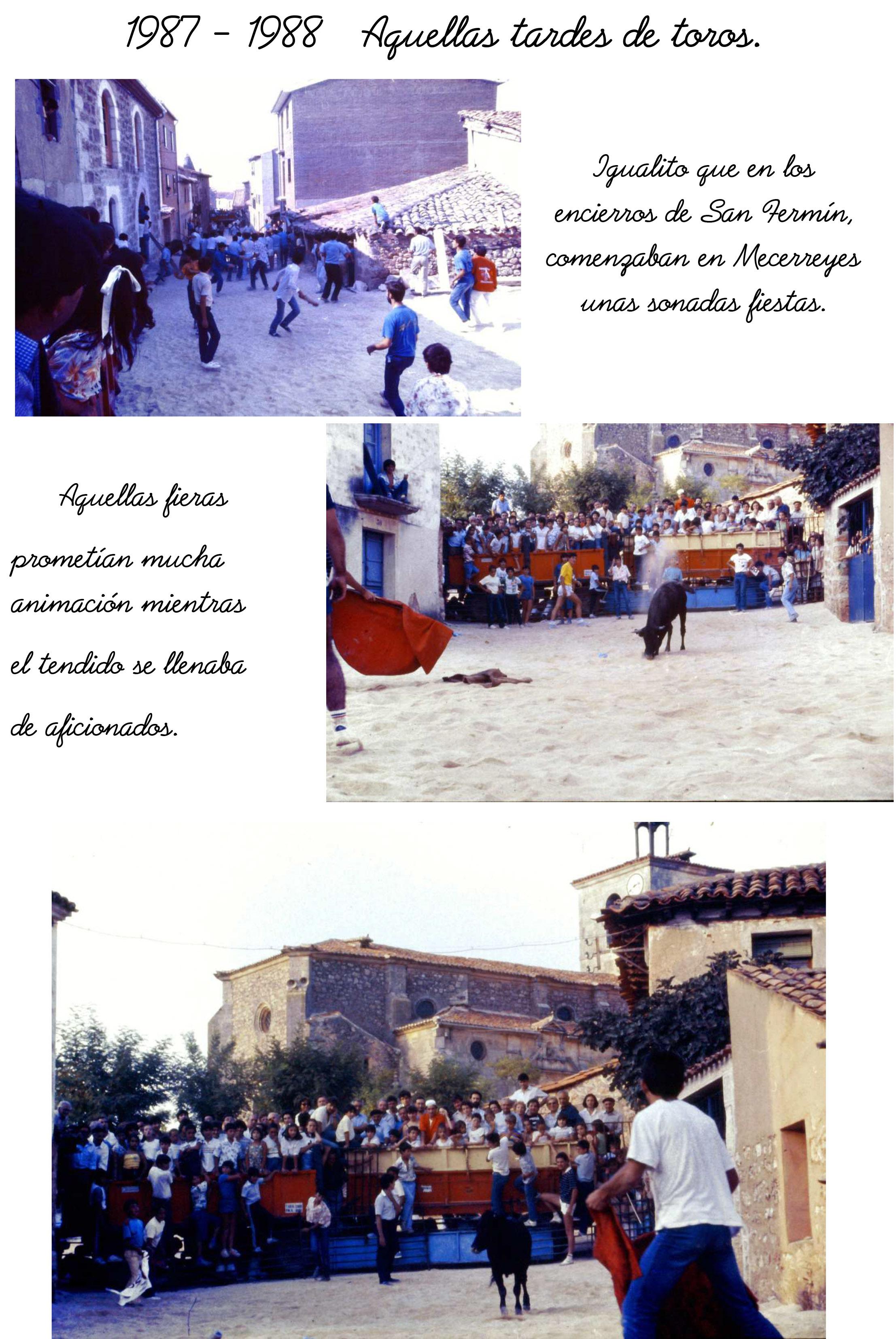 Tardes-de-Toros-1-Mecerreyes-1987-1988