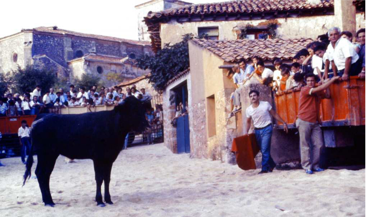 Tardes-de-Toros, Mecerreyes-1987-1988