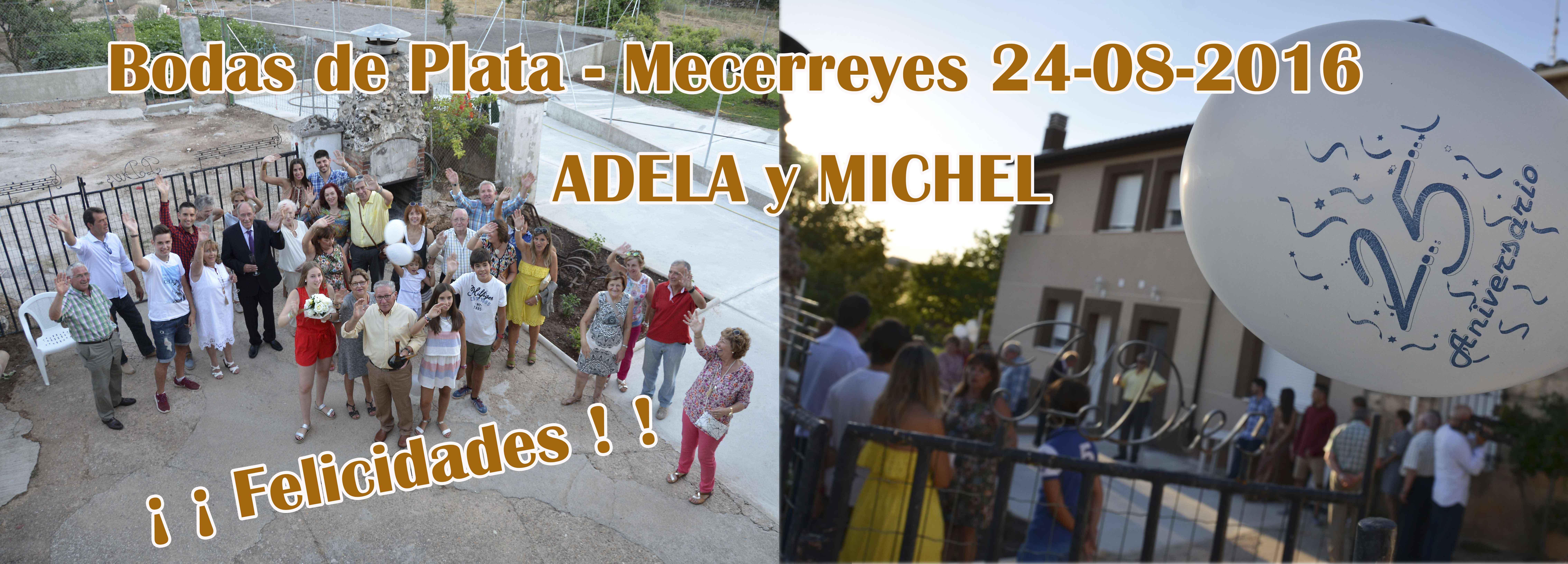 ADELA-MICHEL-2 -Bodas de plata 24-08-16, Mecerreyes