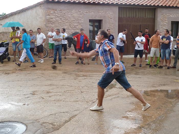 Tuta - Mecerreyes 2016