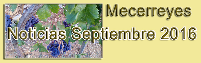 Noticias Septiembre 2016-Caldereta