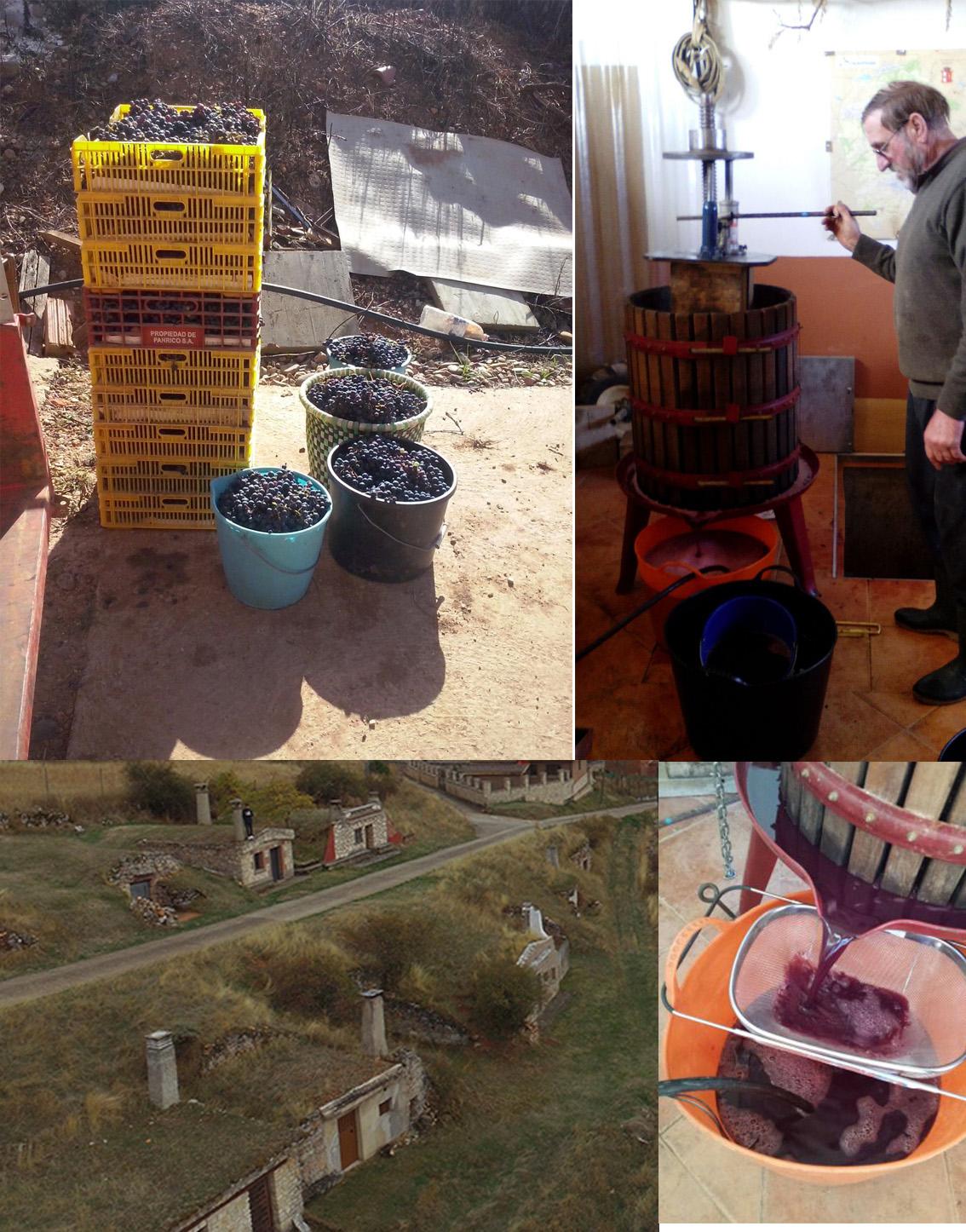 Mecerreyes, bodegas, uvas y vino, octubre 2016